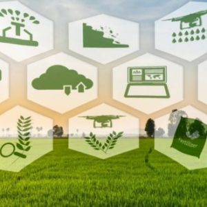 8 current trends in the farming industry